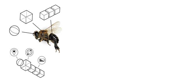 Augmented ecology web2