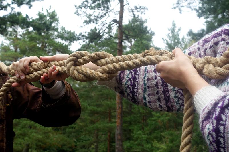 Knots web