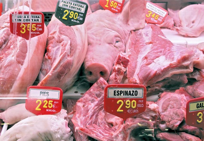 Pig head boqueria web